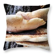 Dryad's Saddle Fungus On Tree Throw Pillow