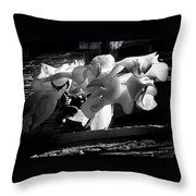 Drying Clothes Throw Pillow