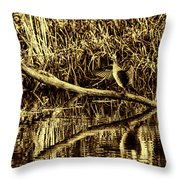 drying cormorant BW- Black bird sitting on log over water Throw Pillow