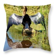 Drying Her Wings Throw Pillow