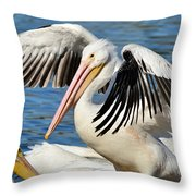Drying Off In Style Throw Pillow