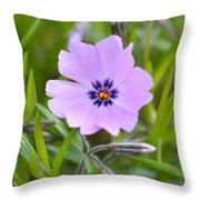 Dsc0040-002 Throw Pillow