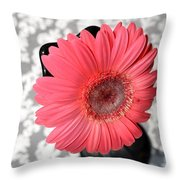 Dsc0060d-001 Throw Pillow