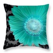 Dsc0061-005 Throw Pillow