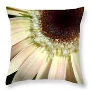 Dsc204d1-002 Throw Pillow