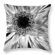 Dsc218d-011 Throw Pillow
