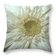 Dsc232-001 Throw Pillow