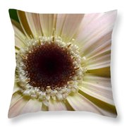Dsc271d-001 Throw Pillow
