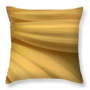 Dsc332-006 Throw Pillow