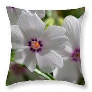 Dsc348d-001 Throw Pillow