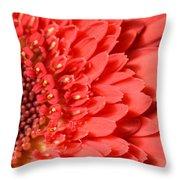 Dsc359d-001 Throw Pillow