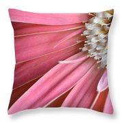 Dsc406d-004 Throw Pillow