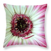 Dsc414d-001 Throw Pillow