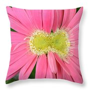 Dsc419d-001 Throw Pillow