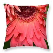 Dsc472-001 Throw Pillow