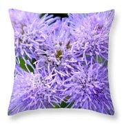 Dsc499d-001 Throw Pillow