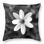 Dsc508d1-003 Throw Pillow