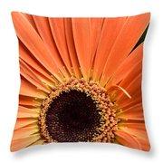 Dsc541d-001 Throw Pillow