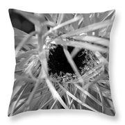 Dsc628d1 Throw Pillow