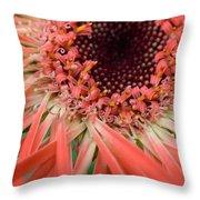 Dsc916d-002 Throw Pillow
