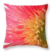Dscn547911.2.c1 Throw Pillow