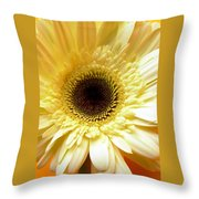 Dscn7673112 Throw Pillow