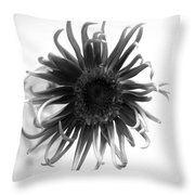 Dscn78222c1 Throw Pillow