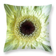 Dscn79281 Throw Pillow