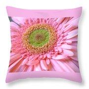 Dscn961441c Throw Pillow