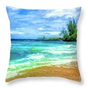 D T Fleming Beach Park Throw Pillow