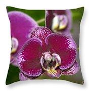 Dtps. Shu Long Prince 8199 Throw Pillow