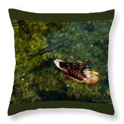 Duck And Fish Throw Pillow
