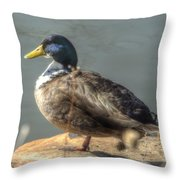 Duck By Pond Throw Pillow
