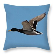 Duck Flight Throw Pillow