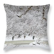 Duck Fly Over Herons On Maumee River Throw Pillow