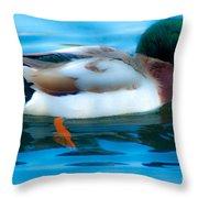 Duck Glide Throw Pillow