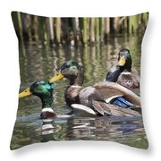 Duck Good Friends 2 Throw Pillow