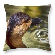 Duck Having Fun Throw Pillow