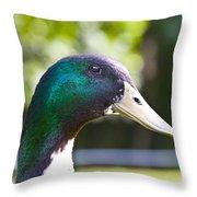 Duck Head 1 Throw Pillow