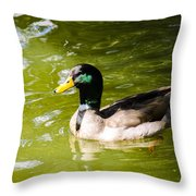 Duck In The Park Throw Pillow