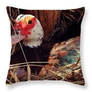 Duck In The Roost Throw Pillow