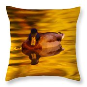 Duck On Golden Water Throw Pillow