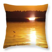 Duck On Sunset Throw Pillow