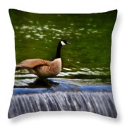 Duck On The River Wye Waterfall - In Bakewell Peak District - England Throw Pillow