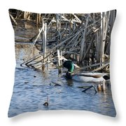 Duck Paddle Throw Pillow