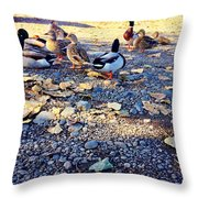Duck Parade On The Beach Throw Pillow