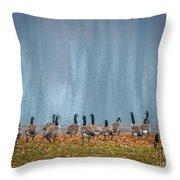 Duck Reflections Throw Pillow