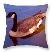 Duck Swimming Throw Pillow