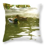 Duck Swimming In A Frozen Lake Throw Pillow