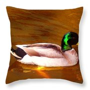 Duck Swimming On Golden Pond Throw Pillow